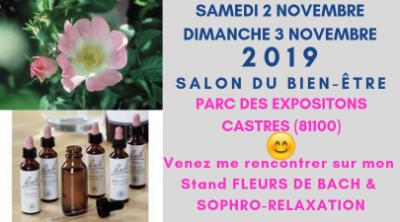 Salon Bien Être 2019 CASTRES Parc des Expositions les samedi 2 & dimanche 3 novembre. Stand fleurs de Bach Patrick Donnadille